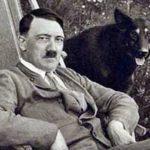 Hitlerovi psi, Göringovi lvi, kočky jako Židé. Jak nacisté zneužívali zvířata